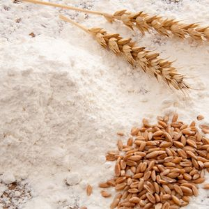 difference-of-germ-whole-grains-wheat-bran-2
